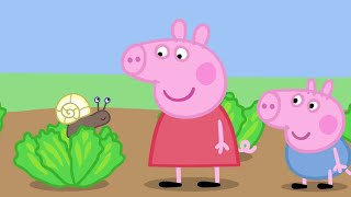 Download Peppa Pig English Episodes - Animals! Peppa Pig Official Video