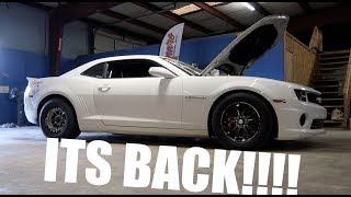 Download THE COWMARO IS BACK!!! AND HEADING TO THE TRACK!! Video
