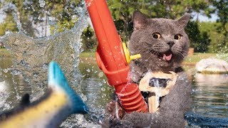 Download New Funny Aarons Animals Compilation Video