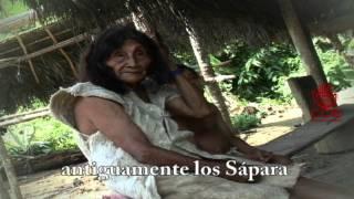 Download SÁPARAS. Nacionalidad indigena amazónica - Pastaza - Ecuador Video