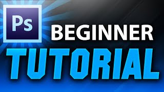 Download Adobe Photoshop Tutorial : The Basics for Beginners Video