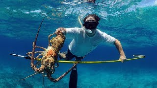 Download Amazing Crab Trap And Crayfish Underwater Gopro.. Giant Lobster Catching Under Deep Sea Video