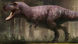 Download The Most Accurate T. rex Ever Reconstructed? Video
