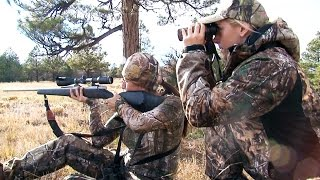 Download Hunting for Mule Deer and Elk in New Mexico Video