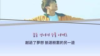 Download 韓中字 Euphoria : Theme of LOVE YOURSELF 起 Wonder - Jungkook(BTS) M/V ver. Video