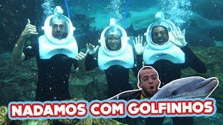 Download NADAMOS COM GOLFINHOS PELA PRIMEIRA VEZ!!! #CasaDosFlopOrlando Video