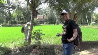 Download Pekarangan in Cianjur, Indonesia - Part 1 Video