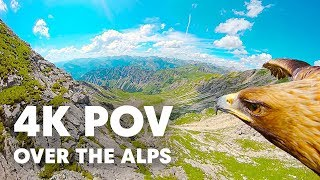 Download Through an Eagle's Eyes: Breathtaking 4K POV over the Alps Video