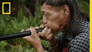 Download Blowpipe Maker Shares Rare, Ancient Craft | Short Film Showcase Video