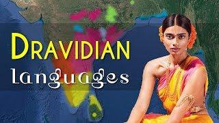 Download Dravidian Language Family Video