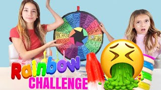 Download MYSTERY WHEEL OF POPSICLE CHALLENGE | Gross! Quinn Sisters Video