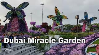 Download Dubai Miracle Garden 2017 Video