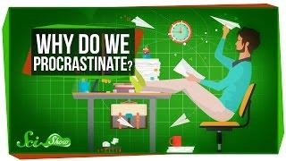 Download Why Do We Procrastinate? Video
