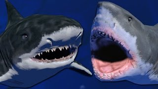 Download LEVEL 100 TIGER SHARK VS GREAT WHITE - Feed and Grow (King of The Ocean Update) Video