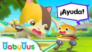 Download Alguien Muerde Las Piernas del Gatito Bebé | Canciones Infantiles | BabyBus Español Video