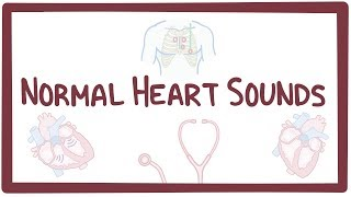 Download Normal heart sounds Video