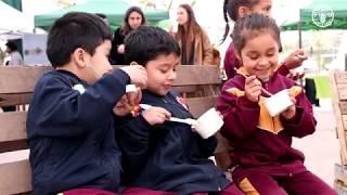 Download Chile: Día Mundial de la Alimentación 2019 Video