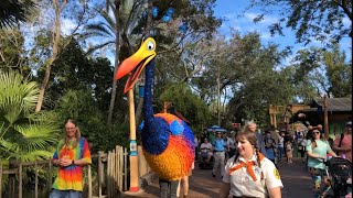 Download Kevin from Up! Roaming Character at Disney's Animal Kingdom Video