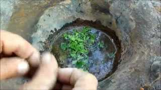 Download Making a Native American Earth bowl Video