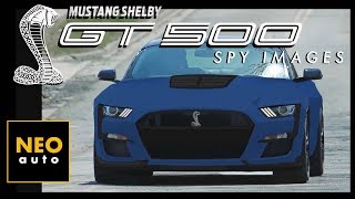 Download 2019 Shelby GT500: OUT IN PUBLIC (New Spy Photos & What We Know) Video