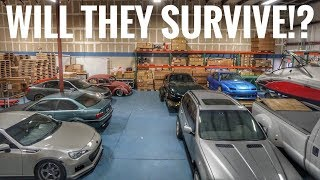 Download SAVING THE CARS FROM HURRICANE IRMA! Video