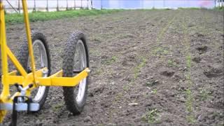 Download Désherbage de semi avec houe maraichere / Cultivateur à dents Video