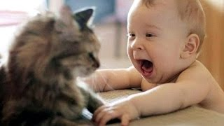 Download Cat Playing with Baby - Best of Cute Cats Love Babies Compilation Video