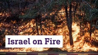 Download Israel on Fire Video