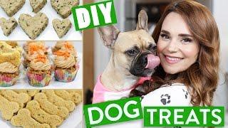 Download DIY DOG TREATS! Video