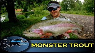 Download MONSTER TROUT on a 4 weight Fly Rod (4wt) - The Totally Awesome Fishing Show Video