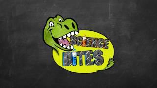 Download Science Bites | Children's Television | MED2207 Video