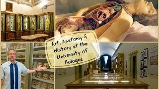 Download Art, Anatomy and History at the University of Bologna Video