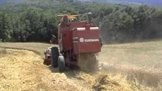 Download TREBBIATURA CON FIATAGRI 3300 AL. Video