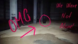 Download Abandoned Factory Exploration ( GONE WRONG ) We Were Not Alone!!! Video