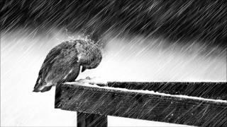 Download ″Cold″ - Jorge Méndez (Sad Piano & Violin Instrumental) Video