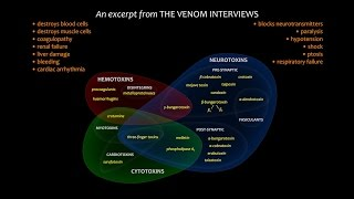 Download The Venom Interviews — It's Complicated (short excerpt from the feature film) Video
