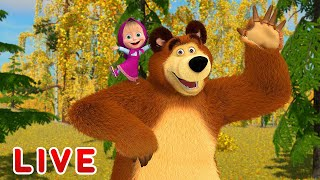 Download Masha and the Bear 🎬💥 LIVE STREAM 💥🎬 Best cartoons for children Video