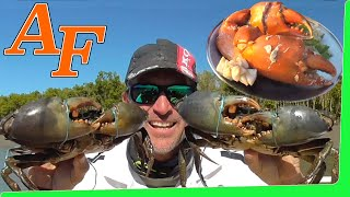 Download Delicious Mud Crab in White wine & Garlic Sauce Recipe Catch and Cook kepiting lumpur EP.410 Video