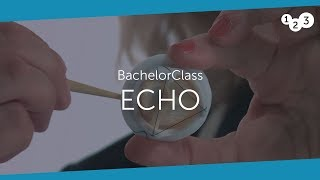 Download Echo BachelorClass - Your introduction to basic echocardiography Video