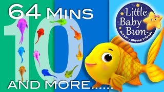 Download Little Baby Bum | Counting Fish | Nursery Rhymes for Babies | Songs for Kids Video