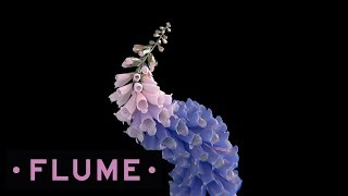 Download Flume - Tiny Cities feat. Beck Video