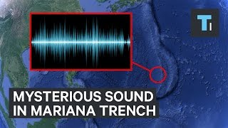 Download The mysterious sound in the Mariana Trench Video
