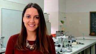 Download Nádia Correia explica o que é o Gratô Video