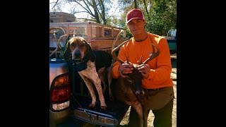 Download SC Deer Dog Drives 2016! We visit with the Blackville Hunt Club! Video
