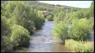 Download Restauración de ríos y prevención de inundaciones: El ejemplo del río Órbigo Video