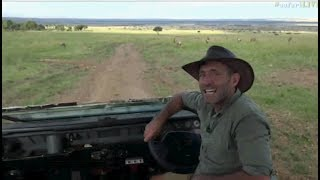 Download Safari Live : James has returned and is in the Masai Mara this afternoon June 20, 2017 Video