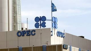 Download Why Saudi Arabia Matters Most at OPEC Meeting Video