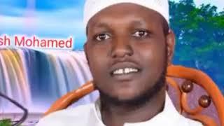 Nashida Afan oromoo Free Download Video MP4 3GP M4A - TubeID Co