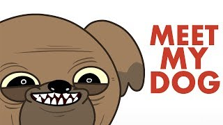 Download Meet My Dog - Animated Video