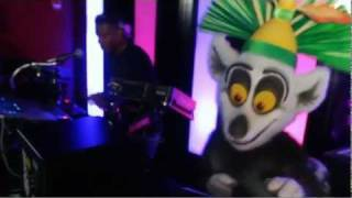 Download The DreamWorks Experience at Gaylord Hotels Video Short - Madagascar Dance Party Video